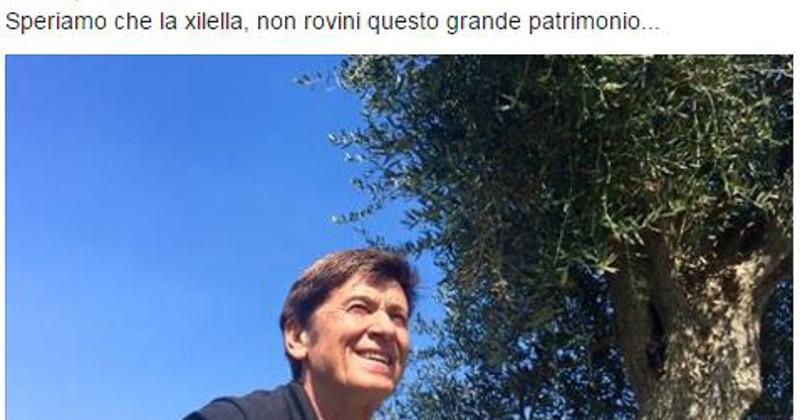 Malore per Claudio Baglioni, concerto annullato. Morandi: